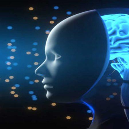 Neurociencia y Procesos Psicológicos claves en el rendimiento deportivo